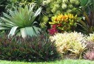 Chapman Bali style landscaping 6old